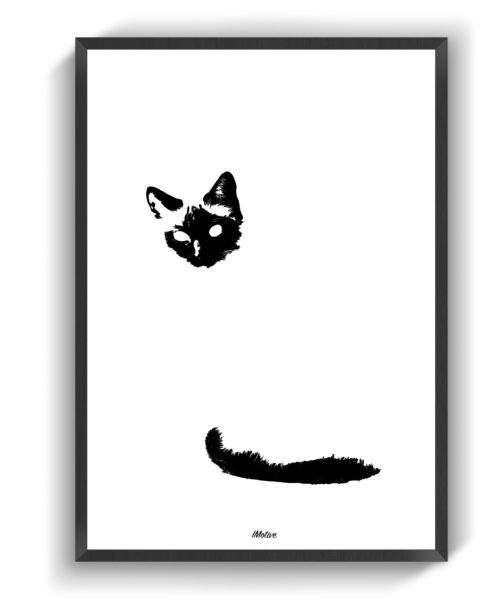 Den usynlige kat