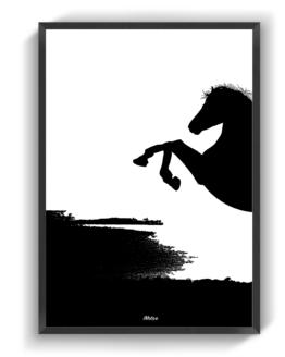 Den Sorte Hest