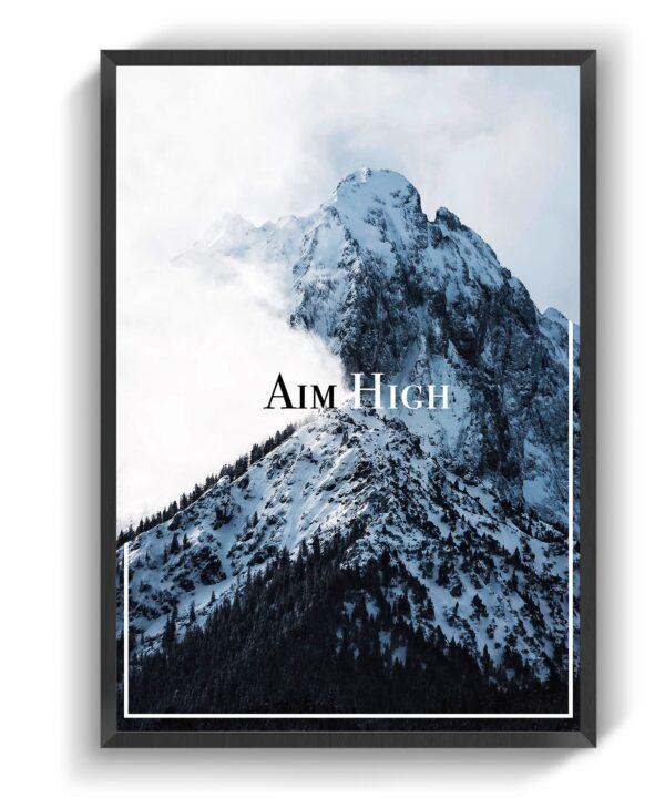 Aim High