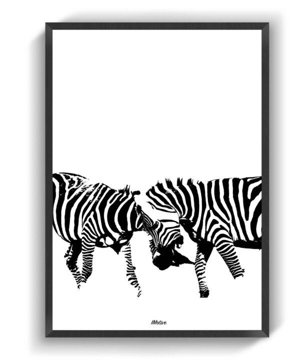 Zebraerne