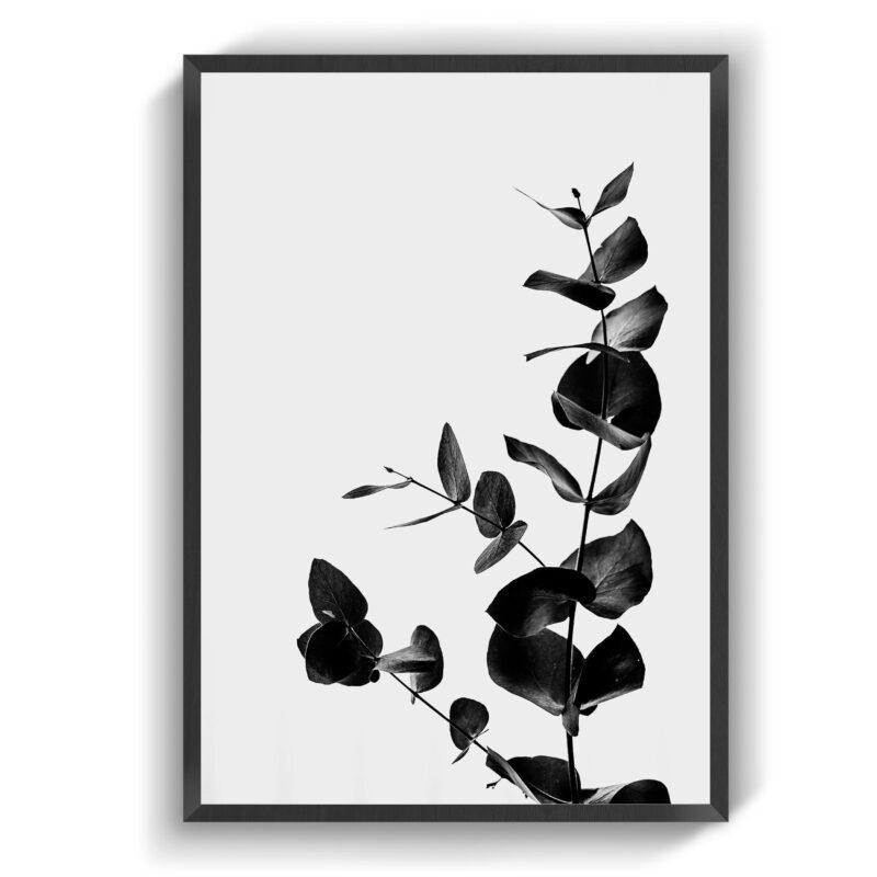 In Bloom (Dark)