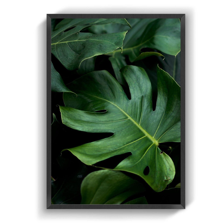 Natureplant