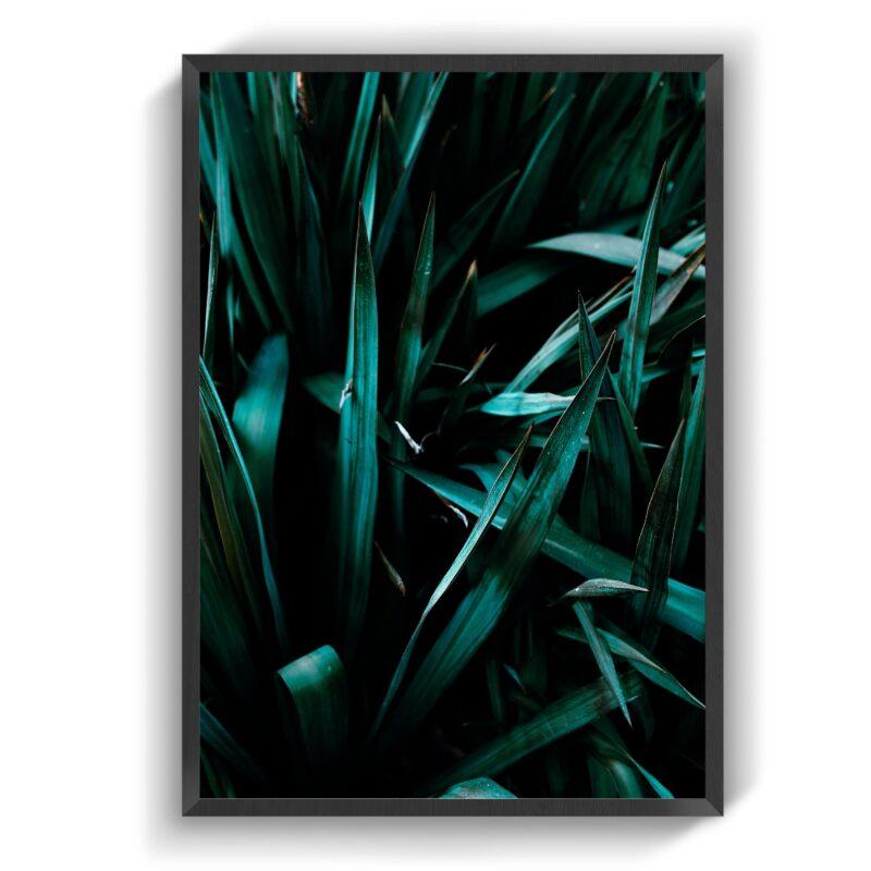 Jungle leafs