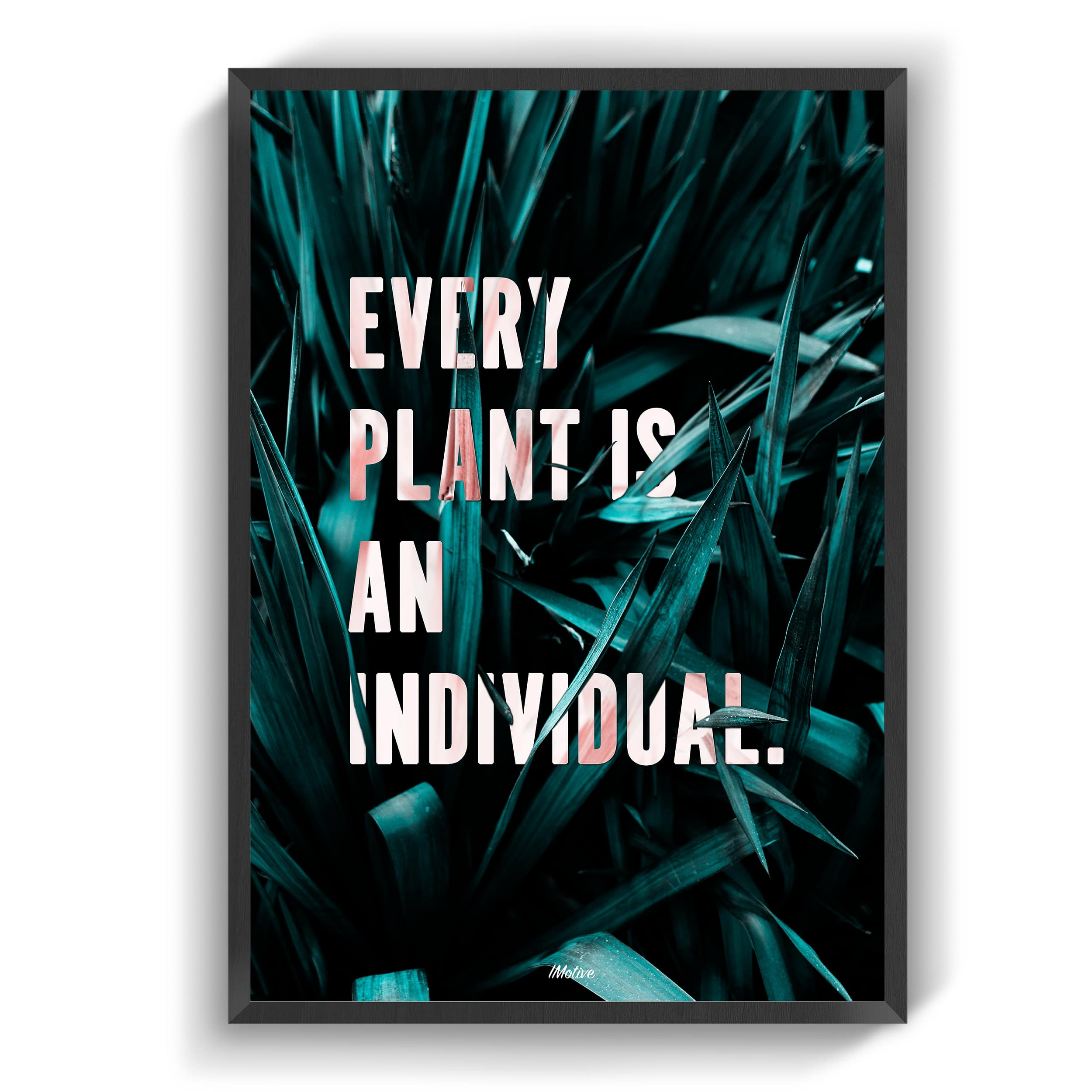 Every plant is an individual
