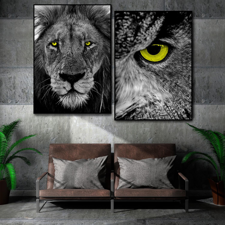 OWL & LION
